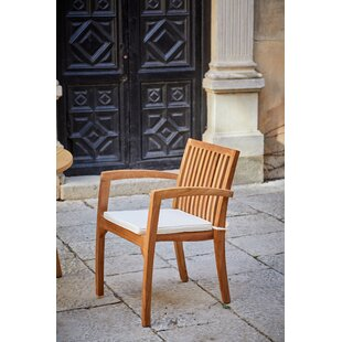 Review Manahan Garden Chair With Cushion