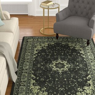 Best Choices Zoelle Traditional Gray/Black Oriental Area Rug By Darby Home Co