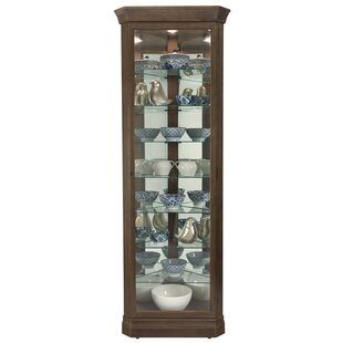 Carrizal Lighted Curio Cabinet by Alcott Hill
