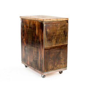 2-Drawer Mobile Vintage File Cabinet