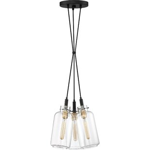 Nome 3-Light Cluster Pendant by Brayden Studio