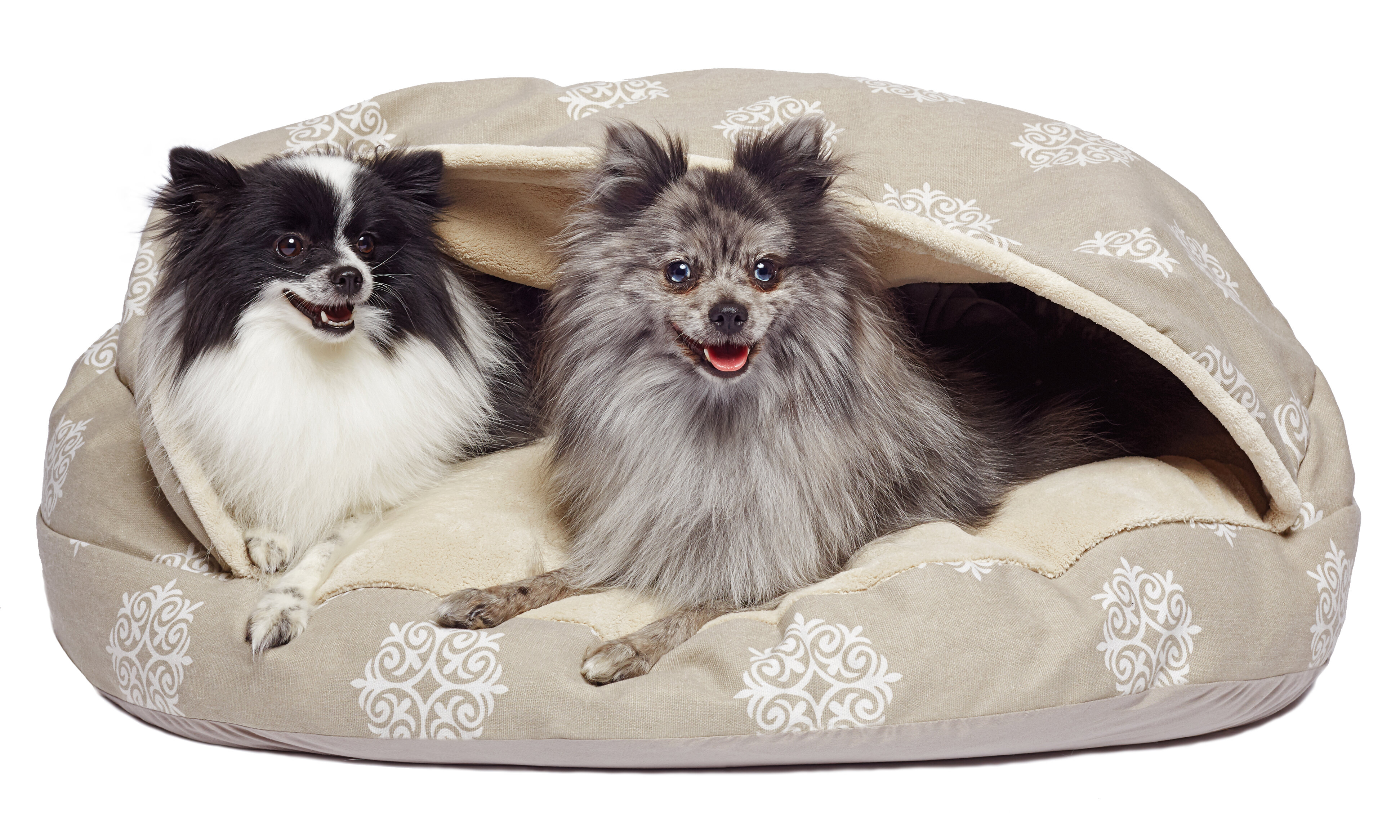 Picture of: Tucker Murphy Pet Cartwright Medallion Canvas Pet Cave Bed Reviews Wayfair Ca