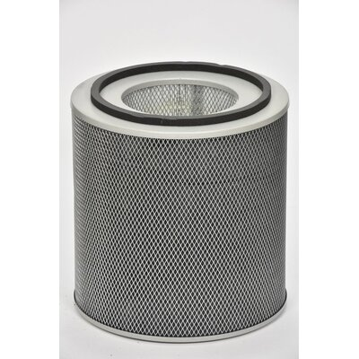 HM 400 HealthMate Air Filter Austin Air Color: White