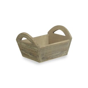 Newington Accent Tray By Brambly Cottage