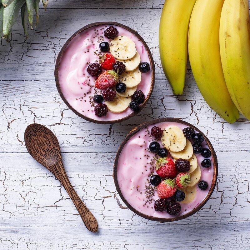 Rainforest Bowls 14 Oz Regular Raw Coconut Dessert Bowl Wayfair