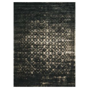 Great deal Durdham Park Black Area Rug ByDarby Home Co