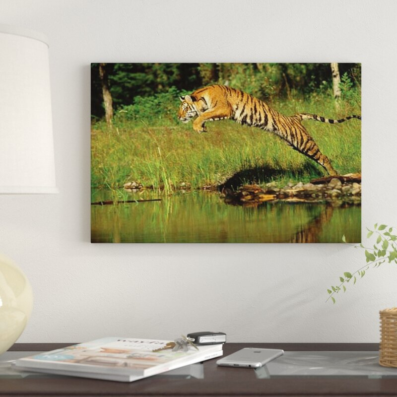 East Urban Home Siberian Tiger Leaping Across River Asia Photographic Print On Canvas Wayfair