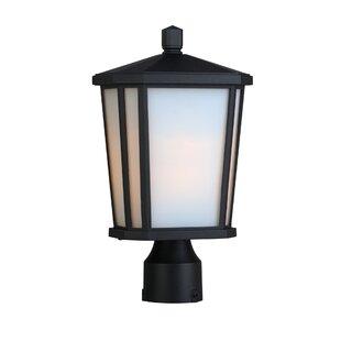 Esters Outdoor 1-Light Lantern Head by Brayden Studio
