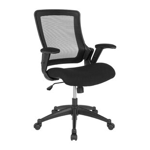 Franzen Mesh Task Chair