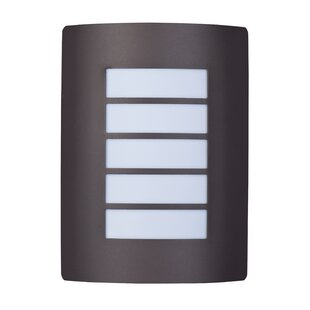 Latitude Run Rhea 1-Light Outdoor Flush Mount