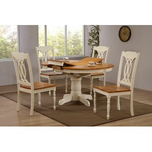 Briana 5 Piece Extendable Solid Wood Dining Set by Alcott Hill