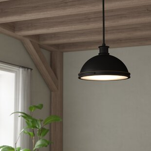 Laurel Foundry Modern Farmhouse Orchard Hill 2-Light Pendant