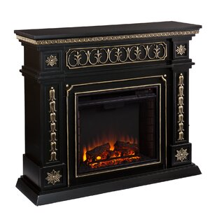 https://secure.img1-fg.wfcdn.com/im/45929124/resize-h310-w310%5Ecompr-r85/4562/45627085/electric-fireplace.jpg