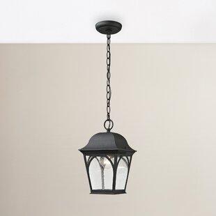 Alcott Hill Grogan 1-Light Outdoor Lantern