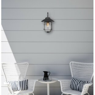 Mosqueda Outdoor Sconce by..