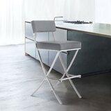 Basso Bar & Counter Stool by Brayden Studio®