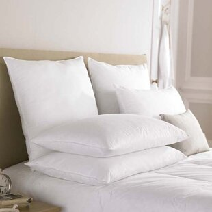 Goose Feather And Down Pillow By Symple Stuff