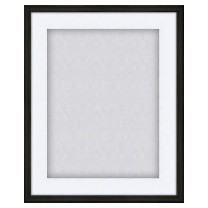 Shadow Box Display Case Picture Frame & Reviews | Birch Lane