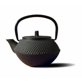 Tetsubin 0.34-qt. Tokyo Teapot