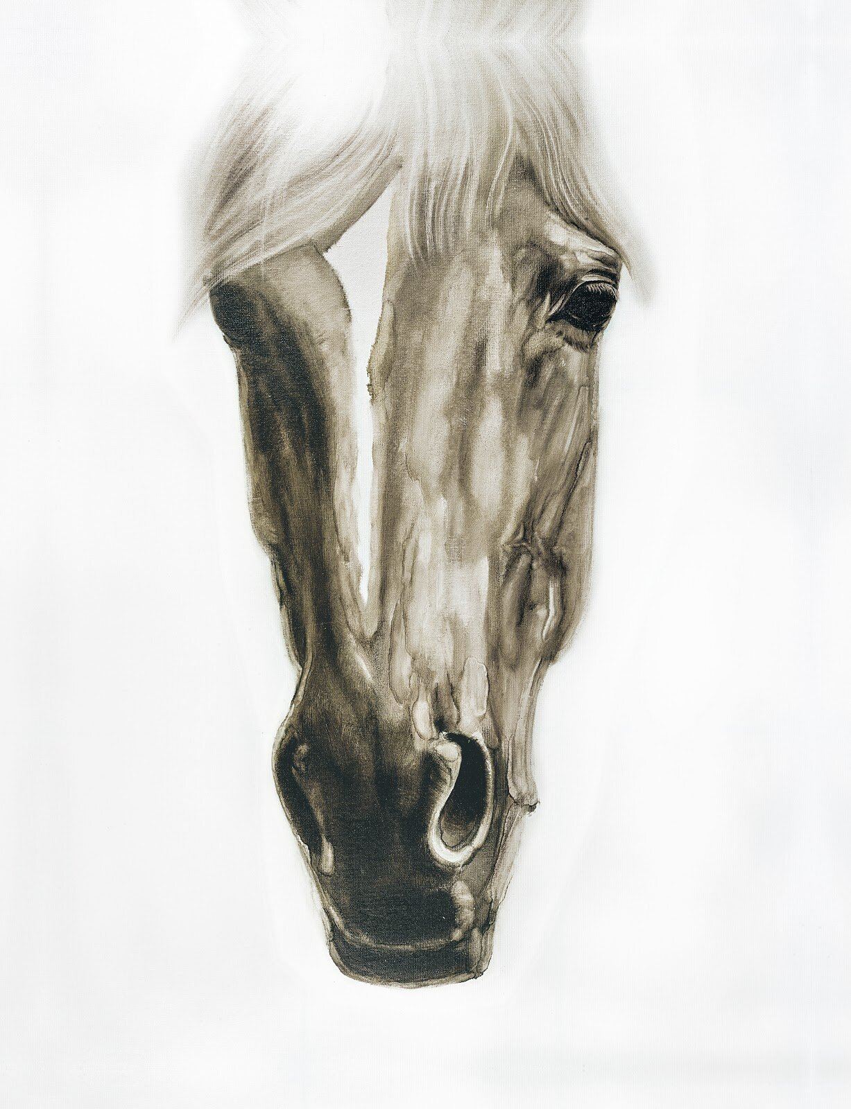Union Rustic White Horse Ii Oil Painting Print On Wrapped Canvas