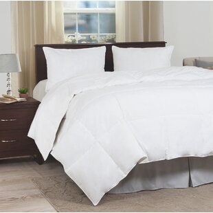 Ultra-Soft All Season Down Alternative Comforter by Plymouth Home Reviews