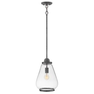 Read Reviews Finley 1-Light Outdoor Pendant By Hinkley Lighting