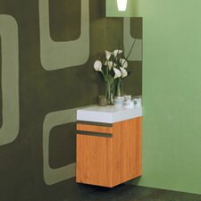 Eastridge 16 W x 66.5 H Wall Mounted Cabinet by DECOLAV