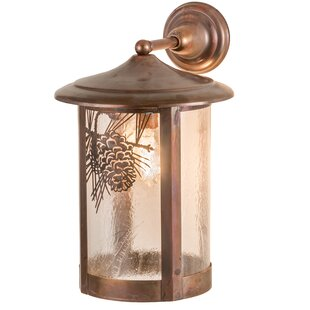 Comparison Wyona Winter Pine Outdoor Wall Lantern By Loon Peak
