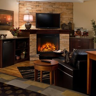 https://secure.img1-fg.wfcdn.com/im/46010067/resize-h310-w310%5Ecompr-r85/2822/28225595/perkins-wall-mounted-electric-fireplace.jpg