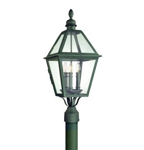 Darby Home Co Theodore 3-Light Outdoor Lantern Head