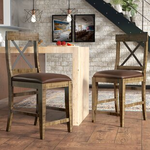 Laguna 24 Bar Stool (Set of 2) by Trent Austin Design