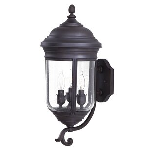 Great Outdoors by Minka Amherst 3-Light Outdoor Sconce