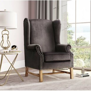 Hahn Wingback Chair by Rosdorf Park