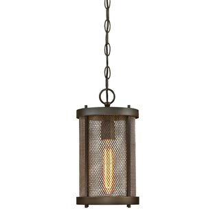 Brayden Studio Ybanez 1-Light Outdoor Pendant
