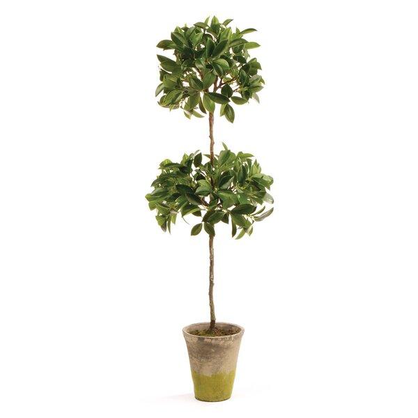 faux plants & trees | birch lane