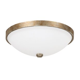 Affordable Rickey 2-Light Flush Mount By Mistana
