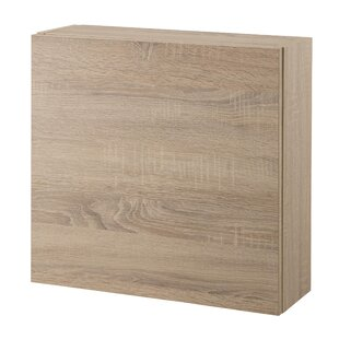 Tuvalu 50 X 47.5cm Wall Mounted Cabinet By Ebern Designs