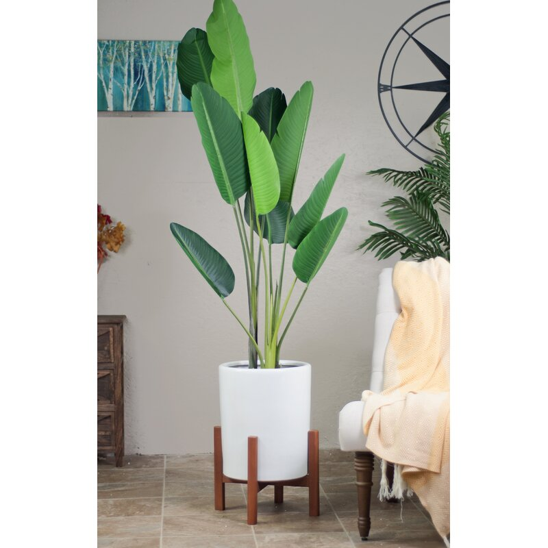 George Oliver Kilkenny Ceramic Pot Planter Reviews Wayfair