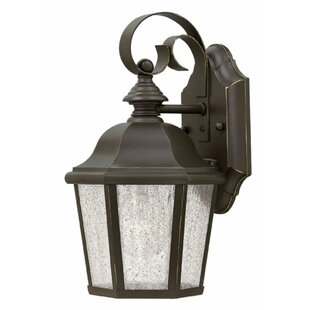 Darby Home Co Christiane Outdoor Wall Lantern