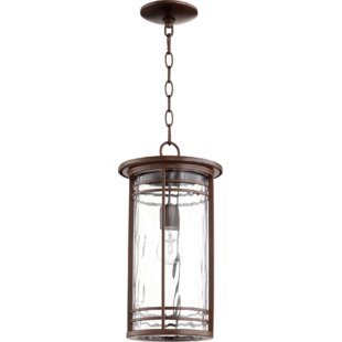 Millwood Pines Amethyst 1-Light Outdoor Hanging Lantern