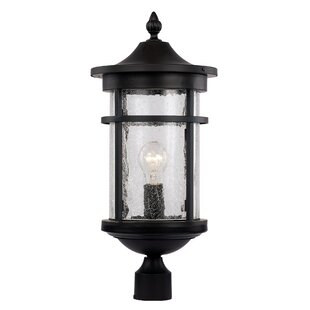 Ilene 1-Light Lantern Head by Latitude Run