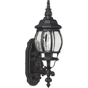 Best Reviews Delmar 1-Light Outdoor Sconce By Charlton Home