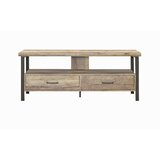 Carruthers TV Stand for TVs up to 65 by Williston Forge