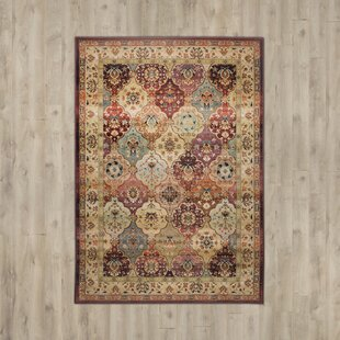 Classic Knotted Rug in Brown by Theko
