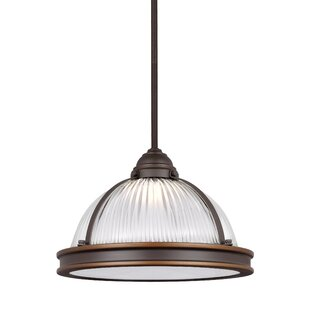 Read Reviews Palisade Dome Pendant By Trent Austin Design
