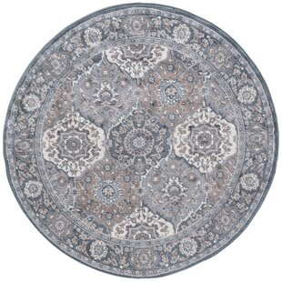 Arkadelphia Traditional Oriental Gray Area Rug by Darby Home Co