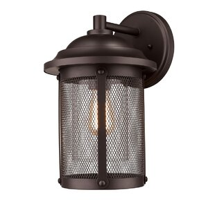 Williston Forge Arian Outdoor Sconce