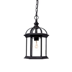Grenville 1-Light Outdoor Hanging Lantern
