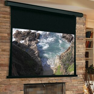 Premier White Electric Projection Screen Low Voltage Motor