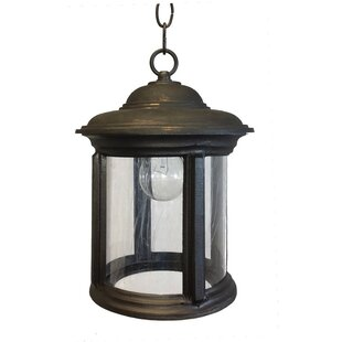 Buy luxury Perales 1-Light Outdoor Hanging Lantern By Alcott Hill